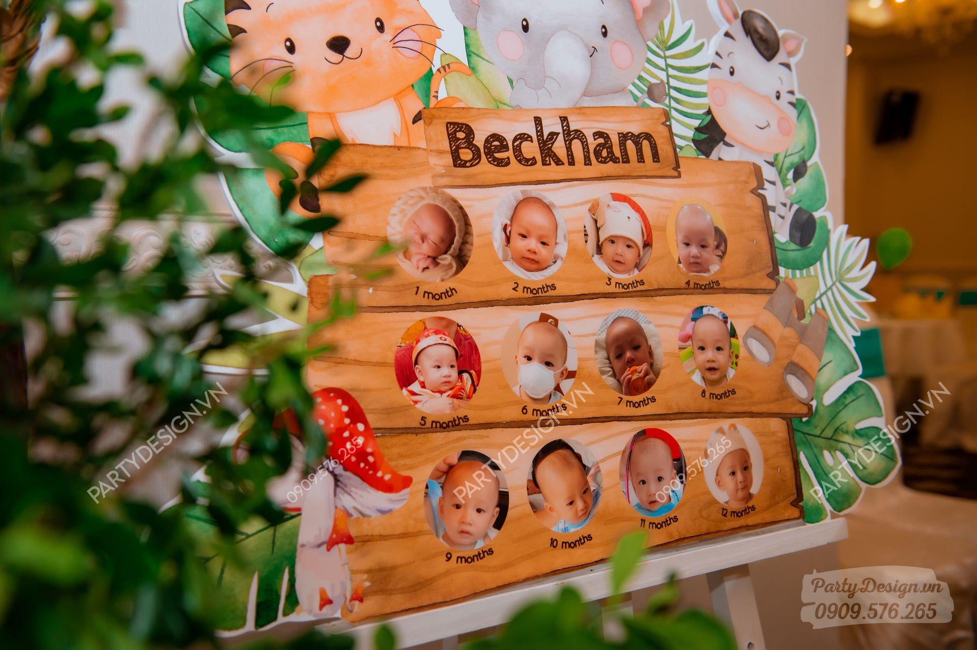 Khung hình 12 tháng Safari Rừng Xanh - bé Beckham