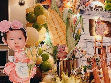 Trang trí sinh nhật bé gái sinh đôi chủ đề Bắp & Bơ